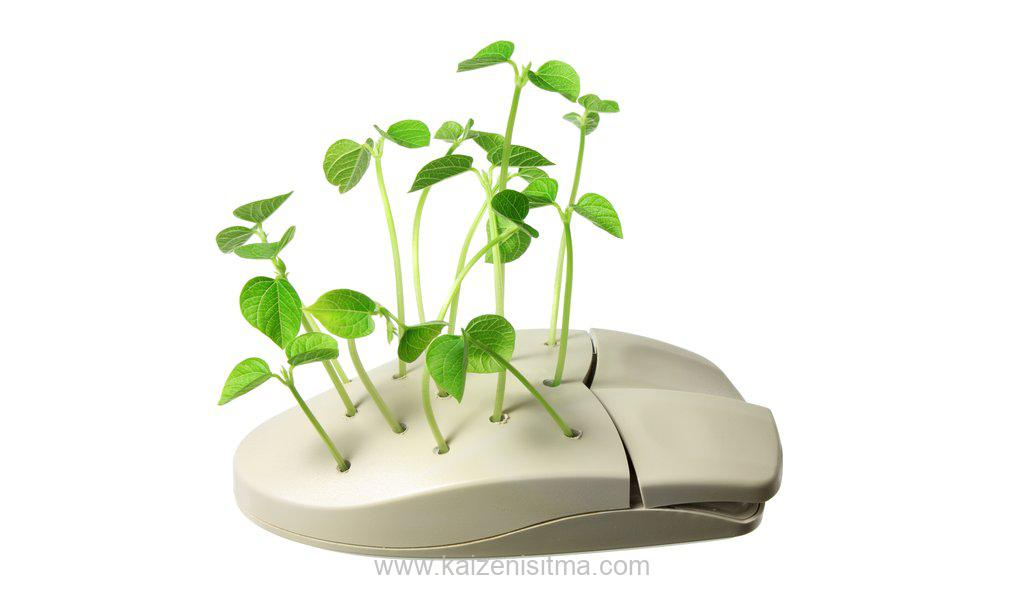 Computer Mouse with Sprouts - Computer Mouse with Sprouts v 1576176989 - Low energy heating