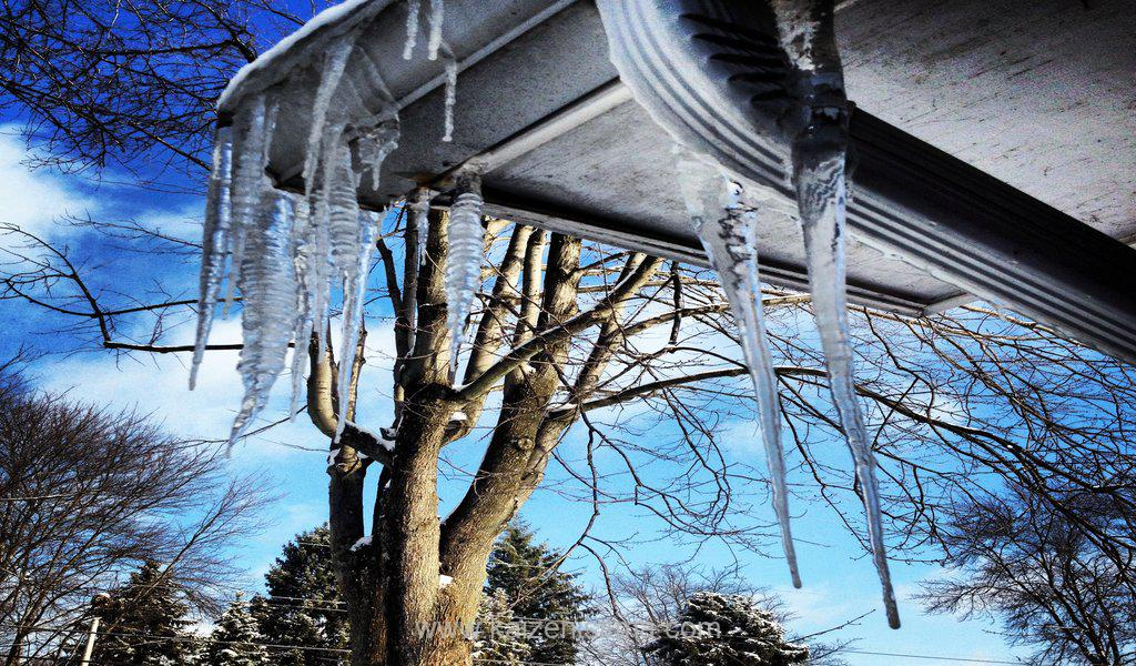 Kaizen flexible snow prevention and ice melting solutions for gutters - winter branch tree sky frozen clouds edge trees branches icicles gutter underside t20 4jO3Ya - Kaizen heat tracing systems